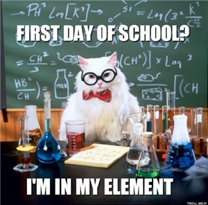 Chemistry Cat says Welcome Back