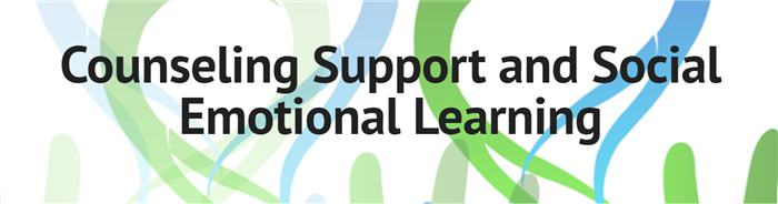 Counseling Support and Social Emotional Learning